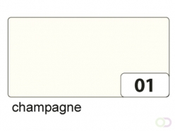 Carton photo Folia 2face 50x70cm 300g nr 01 champagne